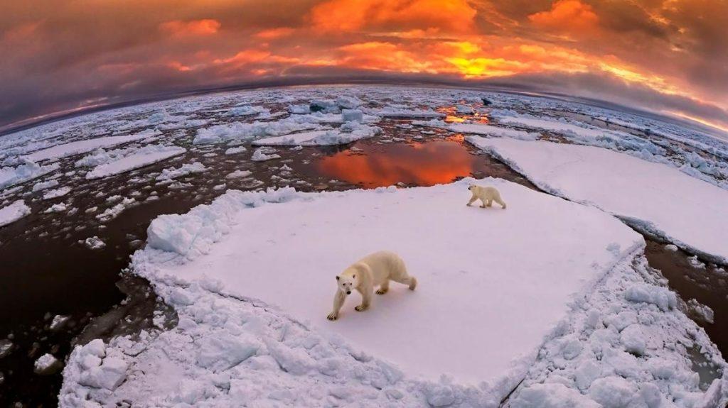 libri cambiamento climatico