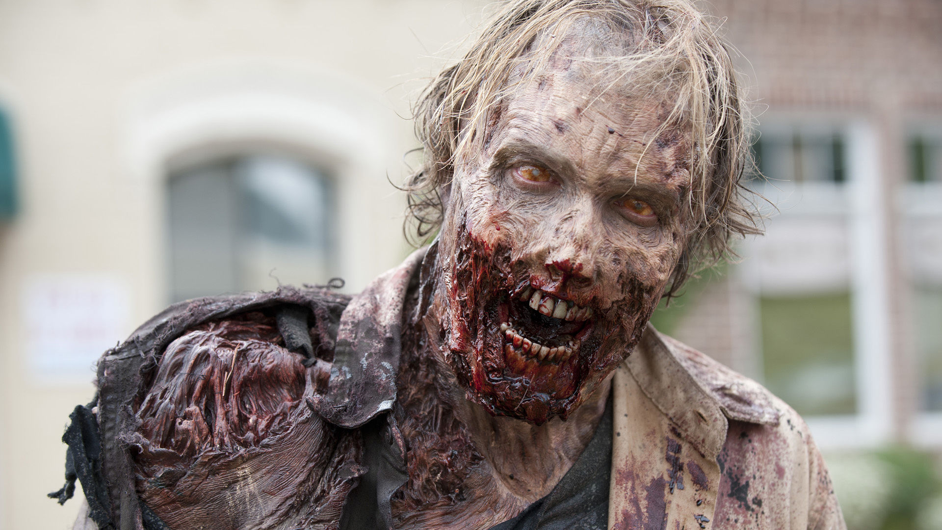 Post apocalittico zombie
