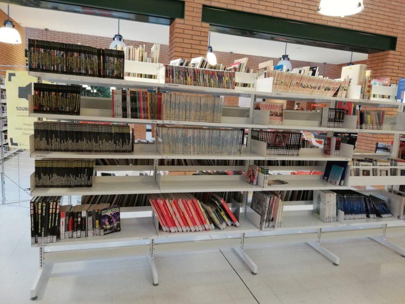 biblioteche videogiochi