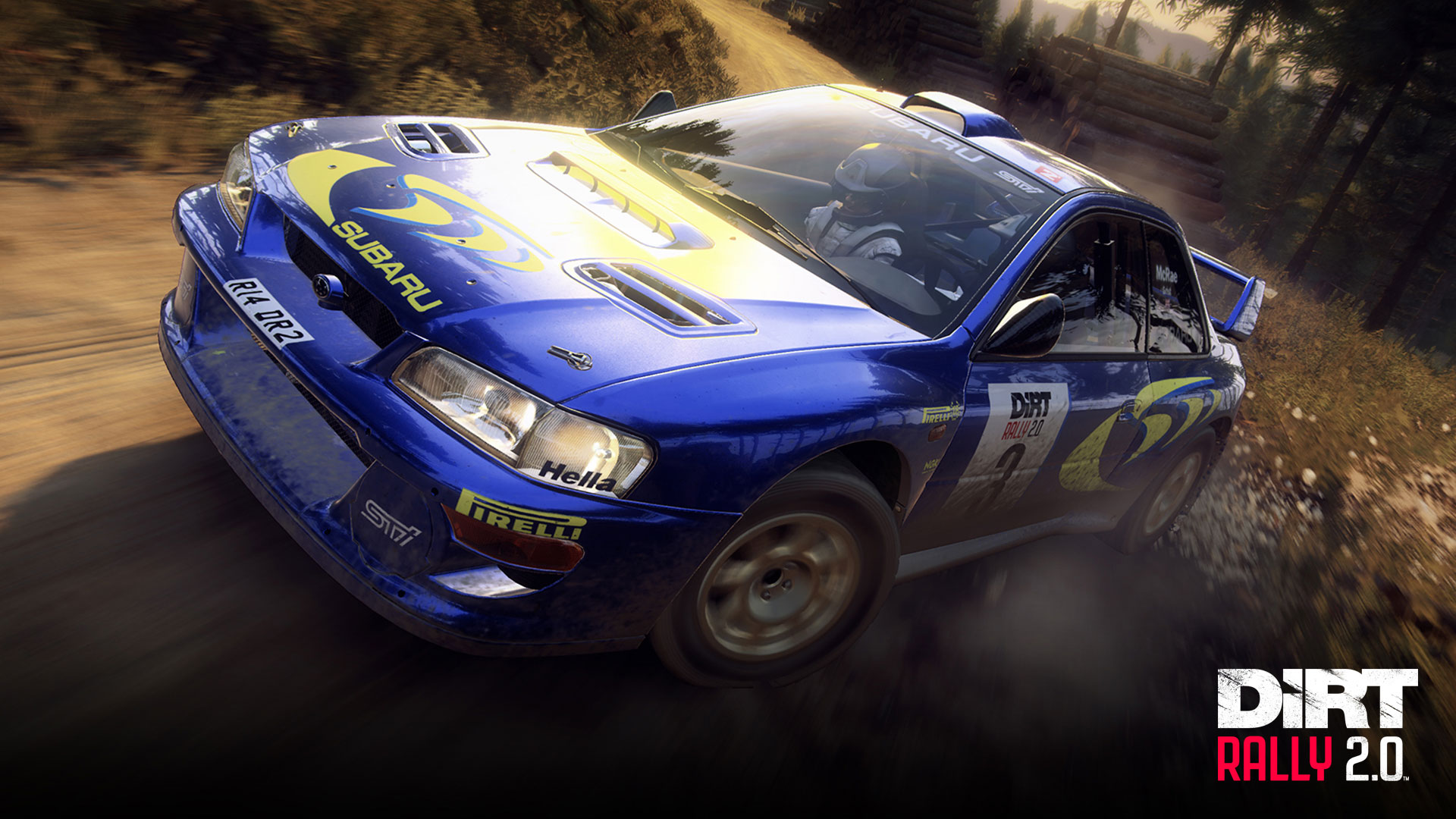 dirt rally 2.0 game year
