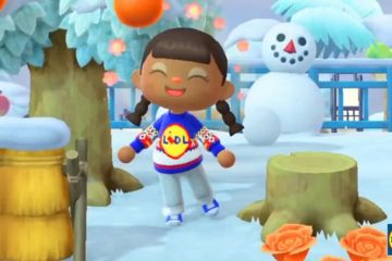 maglione lidl animal crossing