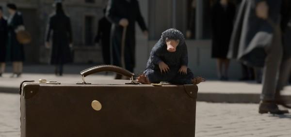 animali-fantastici-i-crimini-di-grindelwald