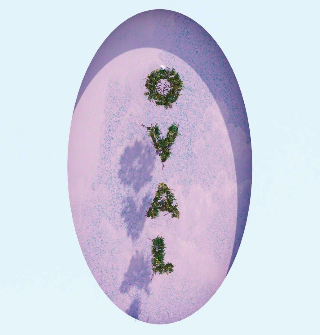 oval elvia wilk