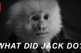 scimmia friends lynch