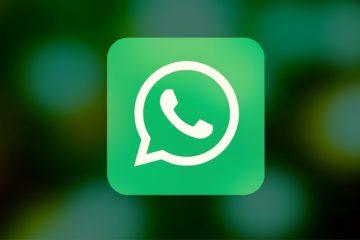 whatsapp partecipanti videochiamate